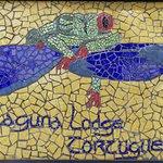 Laguna Lodge Tortuguero Photo