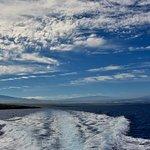 Foto de Adventure X Boat Tours