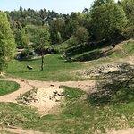 Opel Zoo Foto