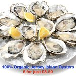 Our Jersey Oysters are 100% organic & we open them to order