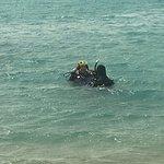 Фотография Egypt Divers
