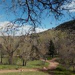 Φωτογραφία: Settler's Park