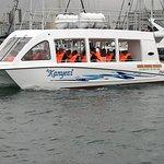 Kanyezi cruise 26 pax maximum, lovely for school tours
