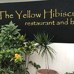 Foto de The Yellow Hibiscus