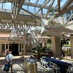 Foto de Whalers Village Museum