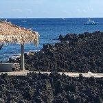 Seagrape Plantation Resort-bild