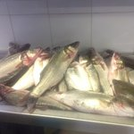 Lovely fresh Sea-bass.  How about this for your evening meal?