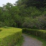 صورة فوتوغرافية لـ Tsujimura Botanical Garden