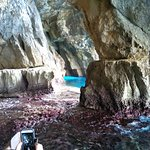 The coral in the Caves