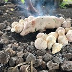Traditional Umu being prepared