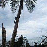 Photo of Cahuita National Park