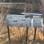 Bow Valley Parkway ภาพถ่าย