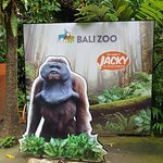 Photo of Bali Zoo