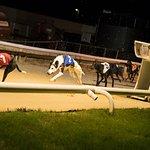 Zdjęcie Sunderland Greyhound Stadium