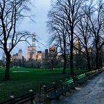 Bild från Central Park