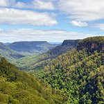 Yarrunga valley, Morton National Park - Wildlife, Waterfalls and Wine full day tour