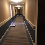 Corridor leading to our room with room service tray not collected