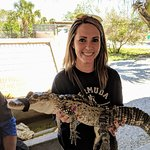 Holding one of the baby alligators!
