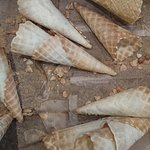 House-made waffle cones.