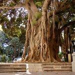 Terraza ubicada en la plaza más bonita de la ciudad de alicante