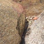 ภาพถ่ายของ หาดท้องตะเคียน (ซิลเวอร์บีช)