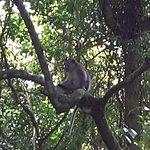 صورة فوتوغرافية لـ Lombok Expeditions