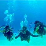 Photo of The Reef Marina