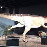 صورة فوتوغرافية لـ Mesalands Community College's Dinosaur Museum