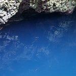Inside the cenote