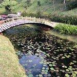 ภาพถ่ายของ Amantikir Park