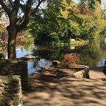 Pond/lake