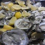 Foto de Crab Daddy's Calabash Seafood Buffet