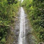 Photo de Manoa Falls