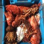 Pesca costiera