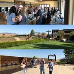 Best Coast Tours at Callaway Winery in Temecula, California.