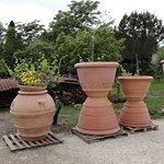 Museum quality pots