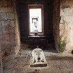 ภาพถ่ายของ อุทยานประวัติศาสตร์พนมรุ้ง (ปราสาทหินพนมรุ้ง)