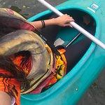 Bellingen Canoe Adventures照片