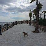 صورة فوتوغرافية لـ Playa Cala Capitan