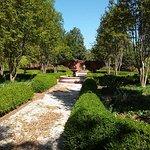 Foto di Robert Mills House & Gardens