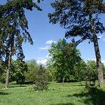 Bois de Vincennes resmi