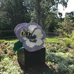 Lego Flower & Bee