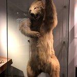 Photo of Stavanger Museum
