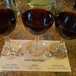 Pinot Noir Flight - I loved the Vampyre