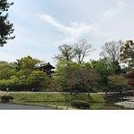 平等院博物館 鳳翔館照片