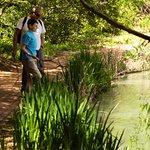 Foto de Hopelands Gardens