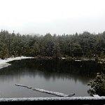 Ushidome Pond照片