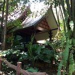 Khao Sok Las Orquideas Resort Picture