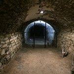 Brewery Cellar