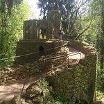 Ein Frühlingstag im Park von Belvedere zu Weimar